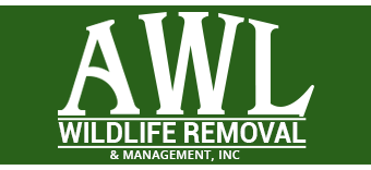 AWL: Wildlife Removal & Management